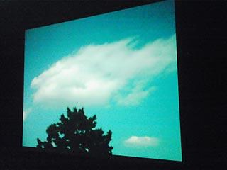 20110721-2.jpg