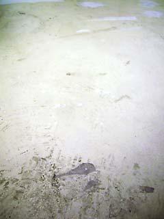 20100106-7.jpg