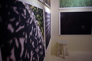 20120228-2.jpg