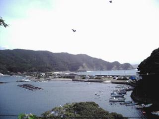 20060919-01.jpg